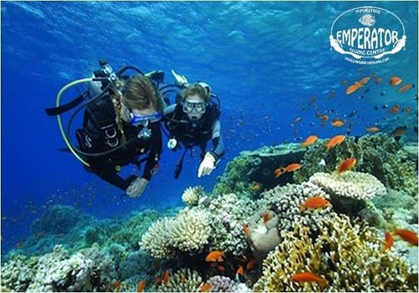 Discover Scuba Diving Coin de Mire
