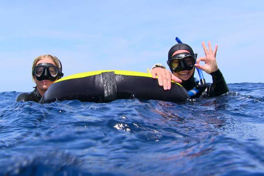 Coral divers Freedive Introduction