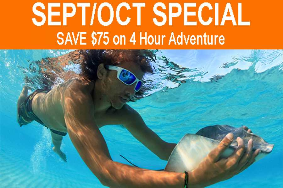 Crazy Crab SAVE $75 on a 4 Hour Adventure