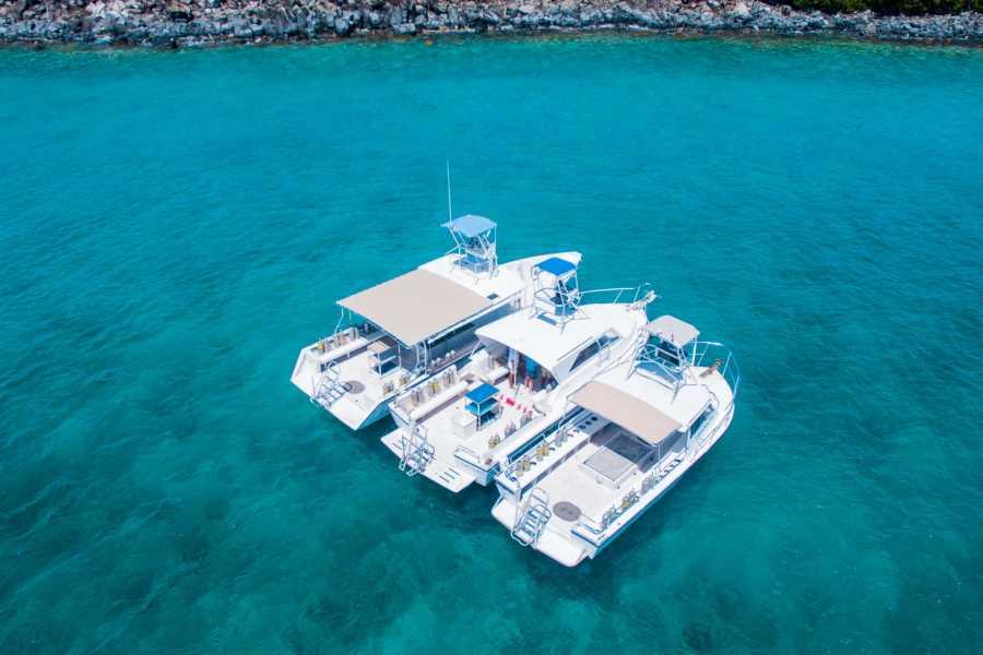 Aquanauts Grenada Grenada Tauchpakete
