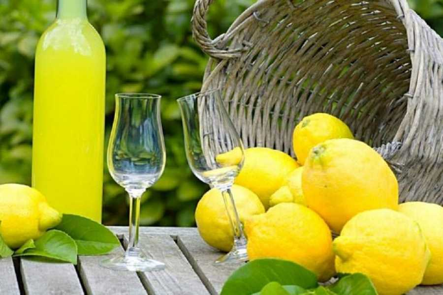 Di Nocera Service Limoncello, Oil & Inlaid Tour and Sorrento Countryside From Sorrento