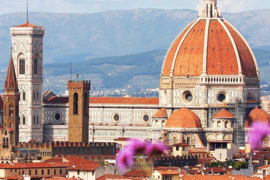 Di Nocera Service Transfer Florence/Amalfi