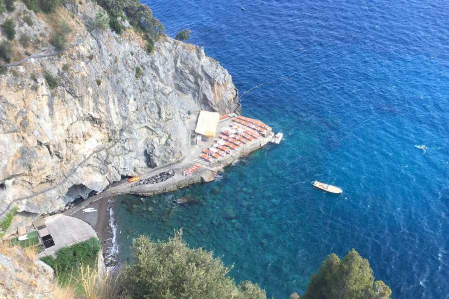 Di Nocera Service Transfer Praiano/Amalfi