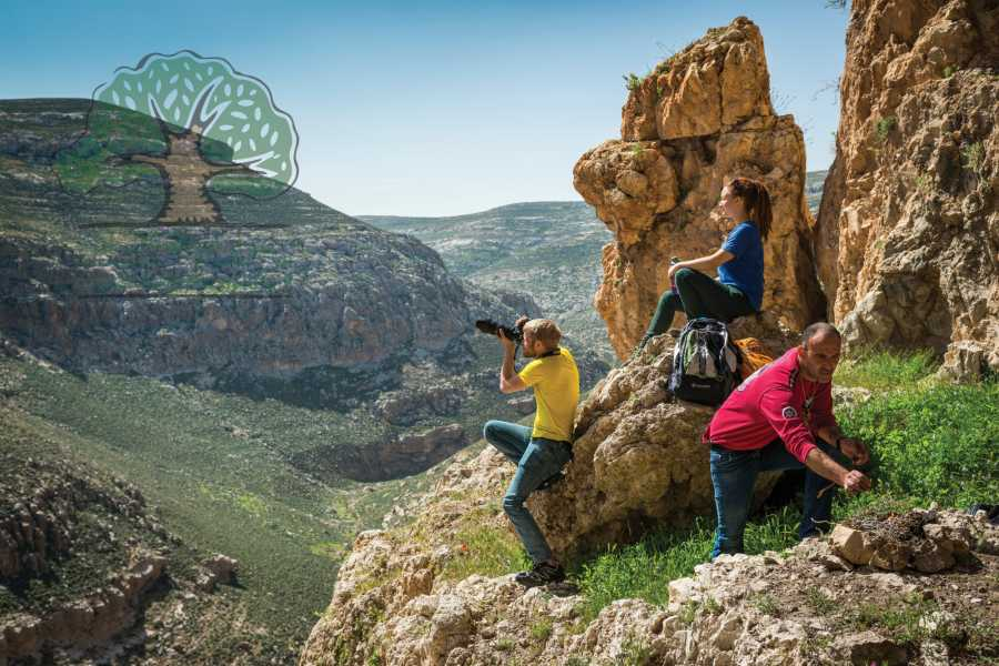Siraj Center EVERY THURSDAY - Tuqu' to Arab Ar-Rashaida (Wadi Jhar)