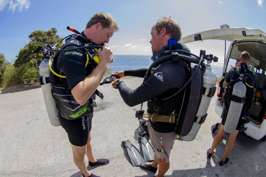Jan Thiel Diving 1 Tank Guided Shore Dive
