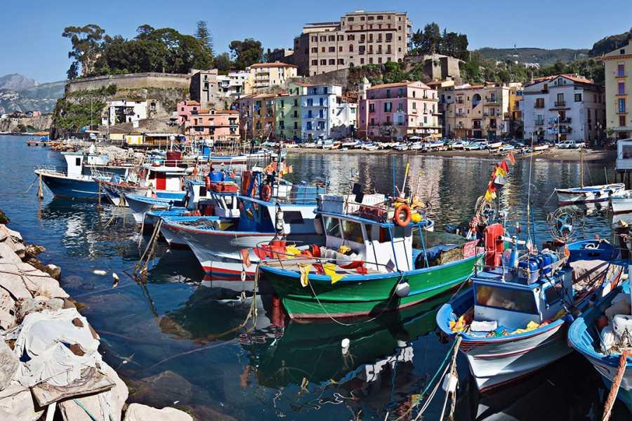 Di Nocera Service Transfer Naples/Sorrento