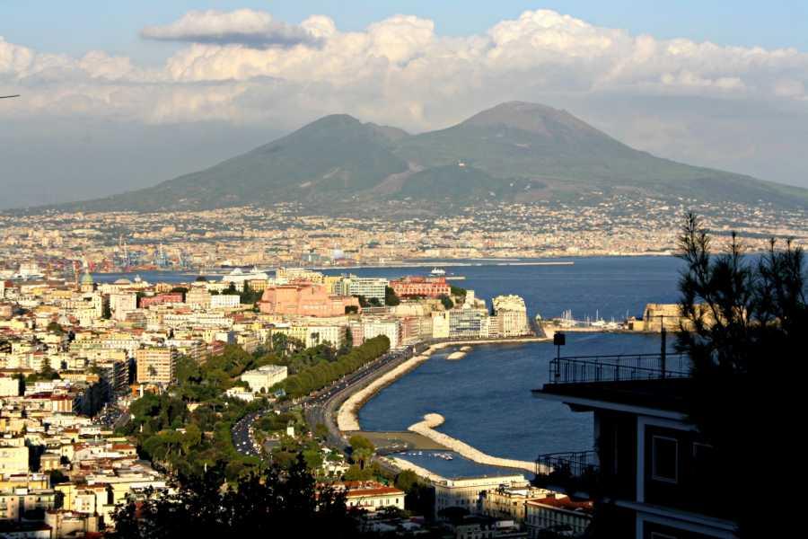 Di Nocera Service Transfer Naples/firenze