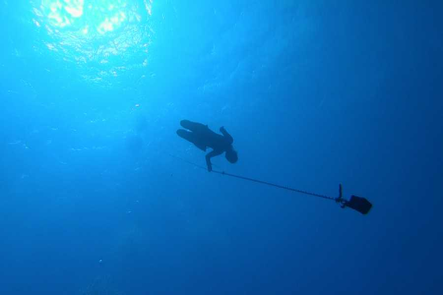 Coral divers Freedive Training Session