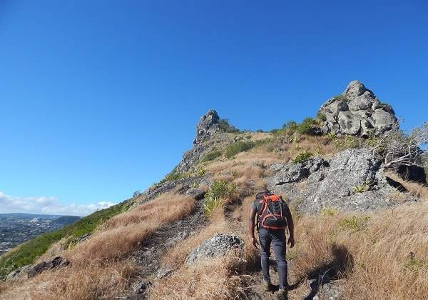 Guided Hike at Corps de Garde