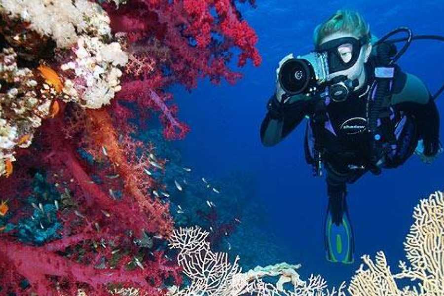 Jan Thiel Diving Adventure Diver
