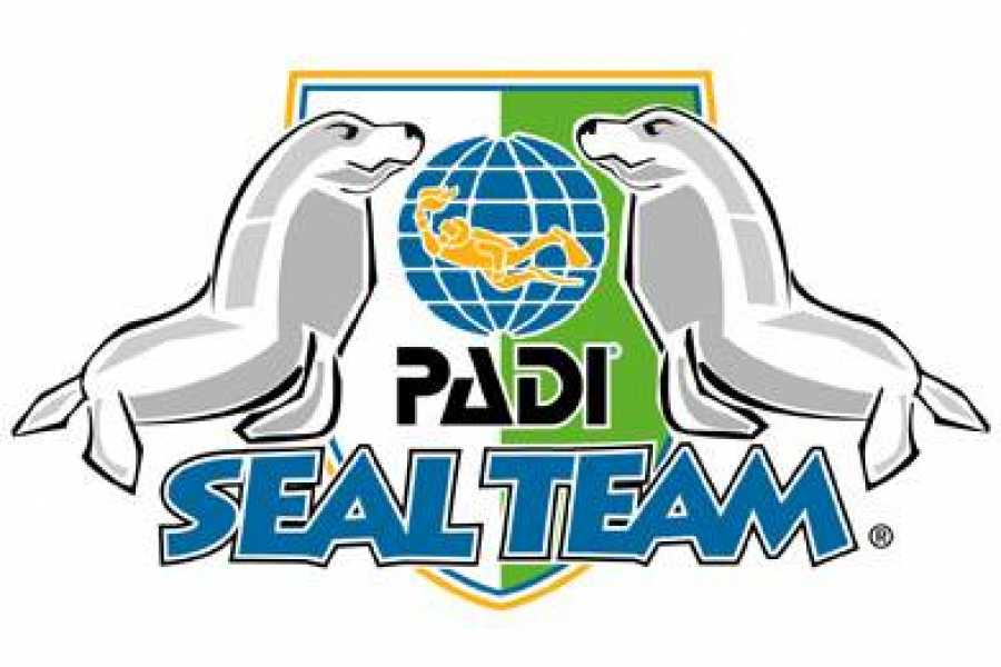 Jan Thiel Diving PADI Seal Team Member