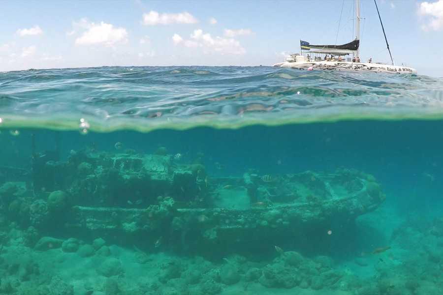 BlueFinn Charters N.V. 3 in 1 Snorkeling trip