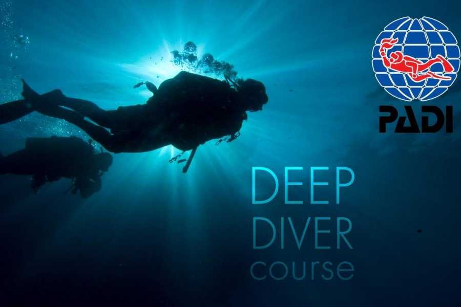 Coral divers October Special