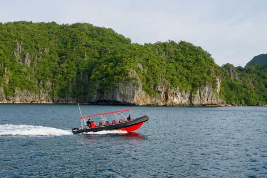 "Philippine Island Cruise Corp Private ""SeaTaxi"" Ribboat Charter"