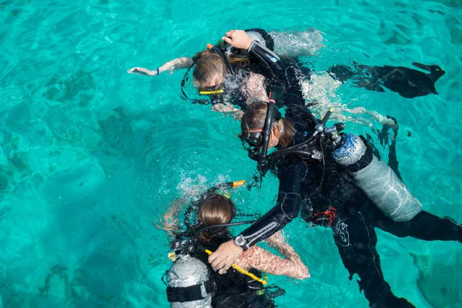 Jan Thiel Diving Repeat Discover Scuba Dive