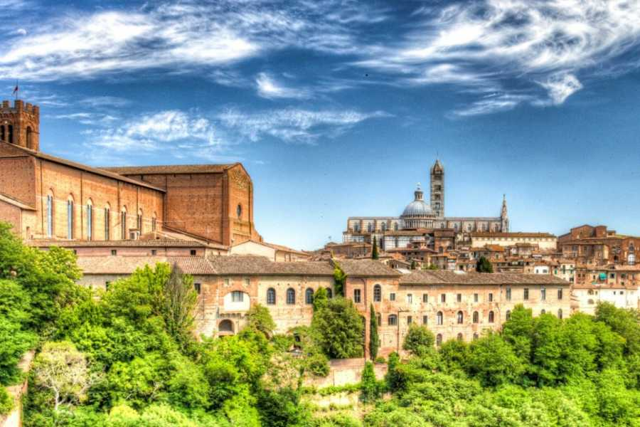 Di Nocera Service One day tour San Gimignano and Siena (optional wine tasting)