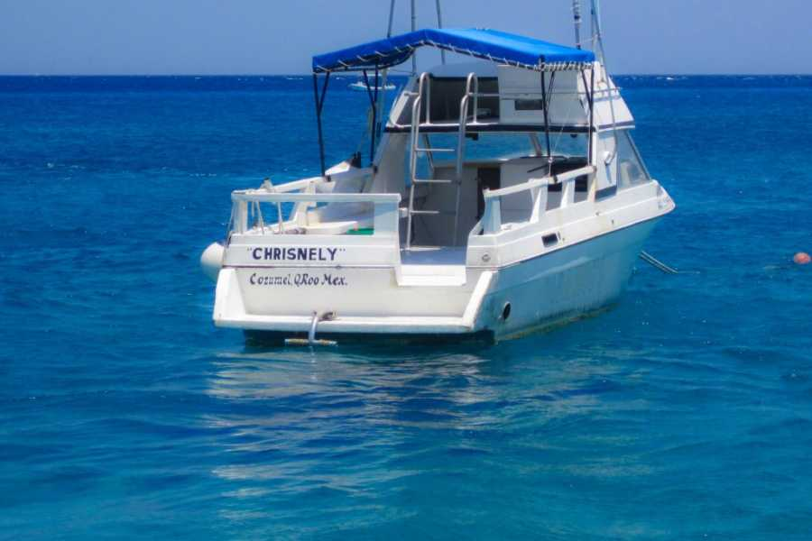 Marsa alam tours Private boattrip to dolphin from Hughada