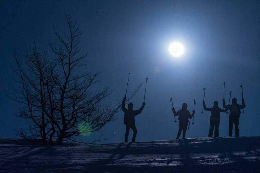 Wildlife Adventures Snowshoeing in the moonlight