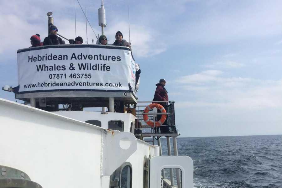 Hebridean Adventures Stornoway - Tarbert 1 Night Cruise
