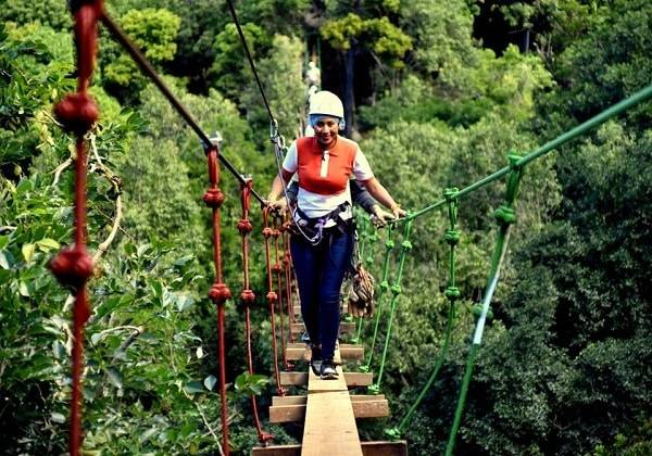 Zip line and Nepalese Bridge Walk