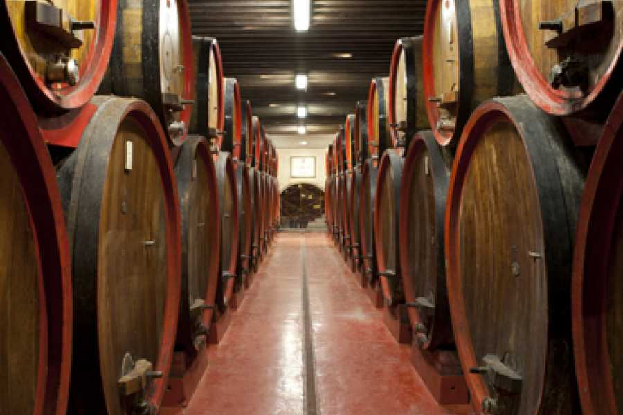 The Italian Tours CX 2019 Gourmet, 4 giorni / 3 notti