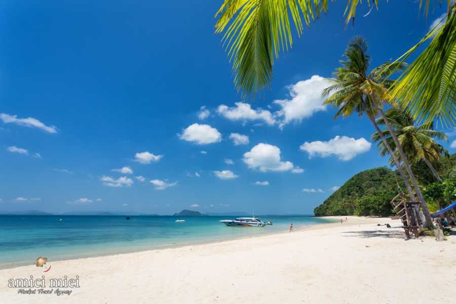AMICI MIEI PHUKET TRAVEL AGENCY PHI PHI ISLAND DELUXE HALF DAY (AM192)
