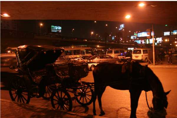 EMO TOURS EGYPT 4-Hour Walking and Horse Carriage City Tour of Cairo