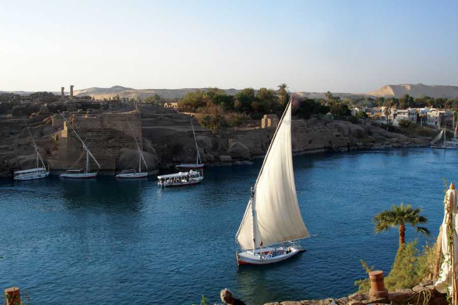 EMO TOURS EGYPT Cairo layover Tour to Giza Pyramids and Felucca Ride on Nile from Cairo airport