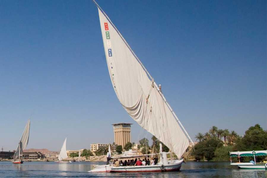 EMO TOURS EGYPT Guided tour to the Egyptian Museum and Felucca ride on the Nile