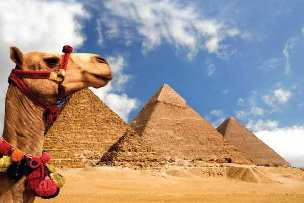 EMO TOURS EGYPT Private Half-Day Tour: Giza Pyramids and Sphinx by Camel or Horse