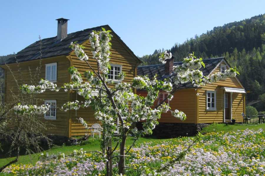 Juklafjord -Jondal Tourist Information Svåsand Gardstun