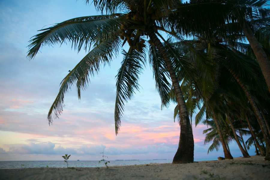 Cacique Cruiser SBA: Del Sol - Isla Diablo - 3 island trip