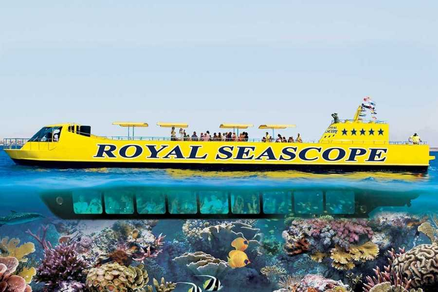 Marsa alam tours Semi Submarine Tour from Makadi