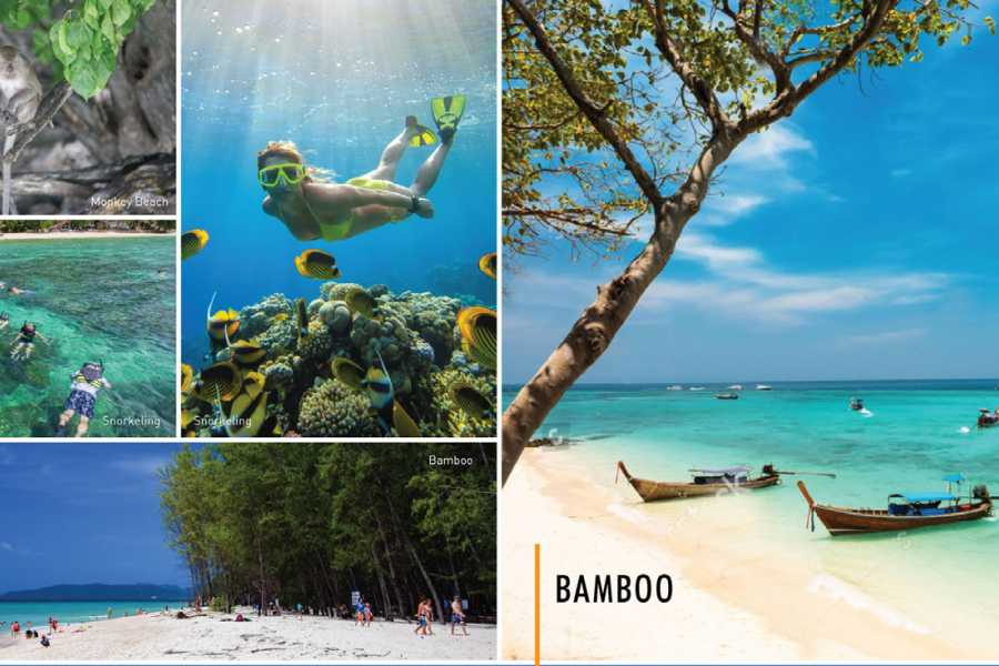 AMICI MIEI PHUKET TRAVEL AGENCY PHI PHI ISLAND WITH ITALIAN, ENGLISH, SPANISH OR FRENCH TOUR GUIDE (AM238)
