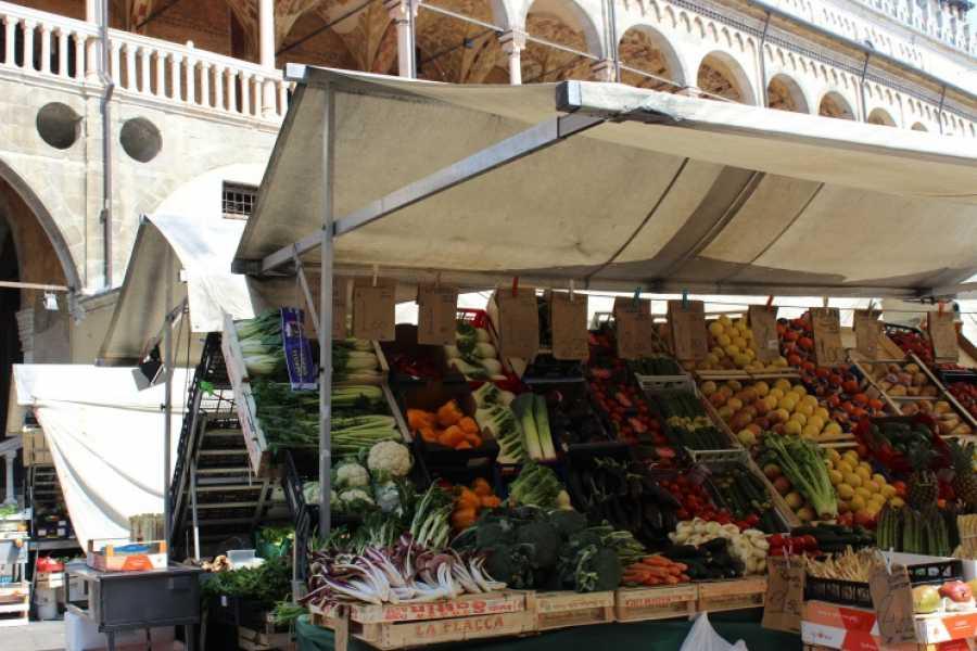 Italian Event Better WANDERING IN PADUA EXPERIENCE - ANDA