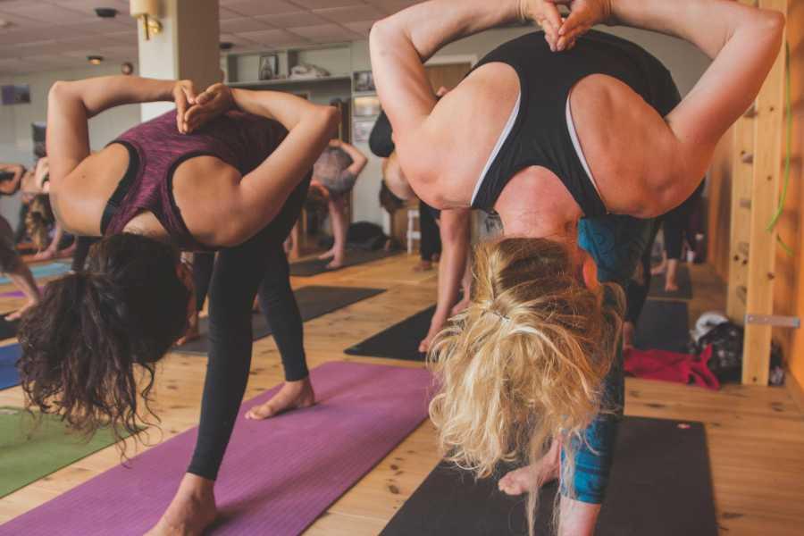 Velkommen til Vaset Yoga for beginners