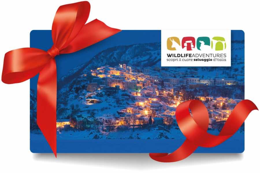 Wildlife Adventures Gift card € 100,00