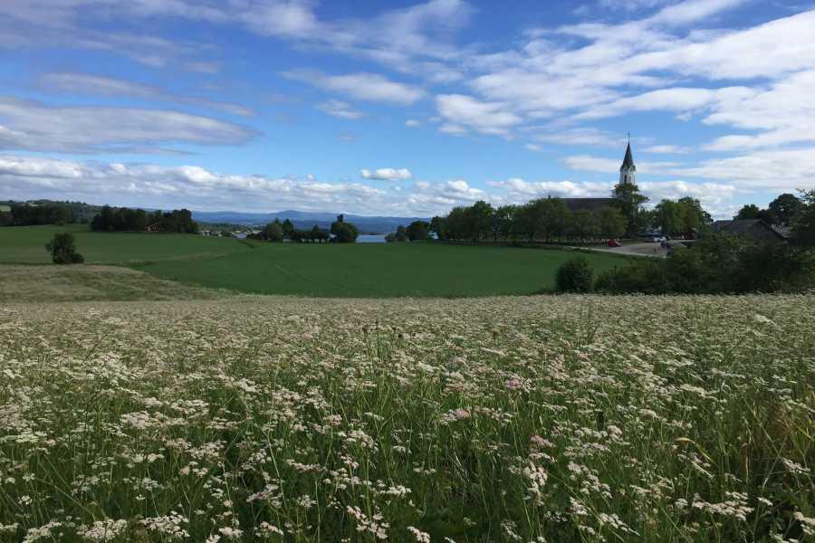 Visit Innherred Akevitt - reisen Trondheim - Inderøy Brenneri
