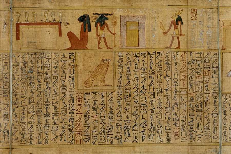 EMO TOURS EGYPT Papyrus Manufacturing Tour and learn Papyrus making in Egypt