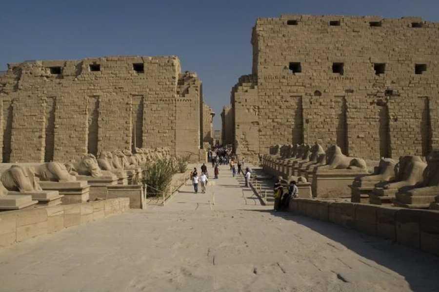EMO TOURS EGYPT Day Tour to Luxor from Aswan