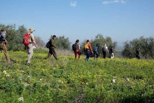 2 November - 9 November 2020, Rummana to Kafr Malek, Autumn Thru-Hike 2020