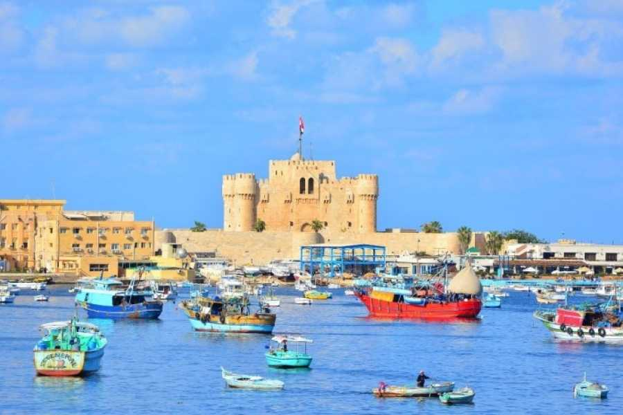 EMO TOURS EGYPT 5 Days 4 Nights Cairo and Alexandria included sightseen