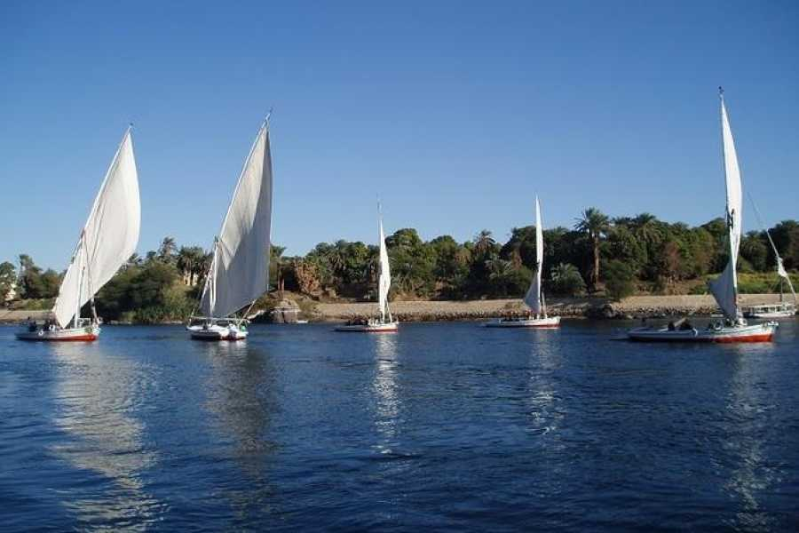 EMO TOURS EGYPT Cheap half day tour to the west bank and felucca Ride for 1 hour in Luxor