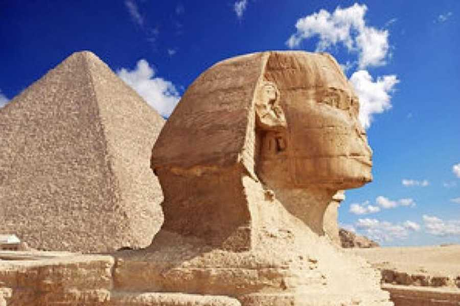 EMO TOURS EGYPT Day Trip to Giza Pyramids & Egyptian Museum and old Cairo from Alexandria Port