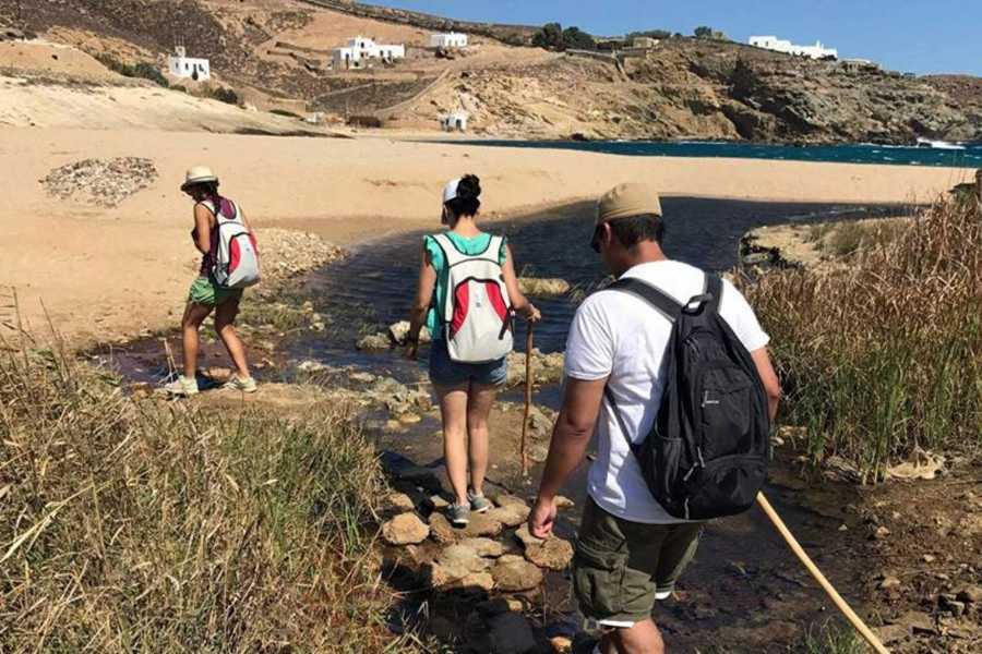 Grekaddict Hiking Tour in Mykonos