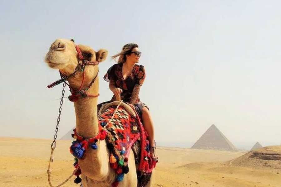 EMO TOURS EGYPT Egypt 8 Days 7 Nights Cairo with Nile cruise from Aswan to Luxor With flight
