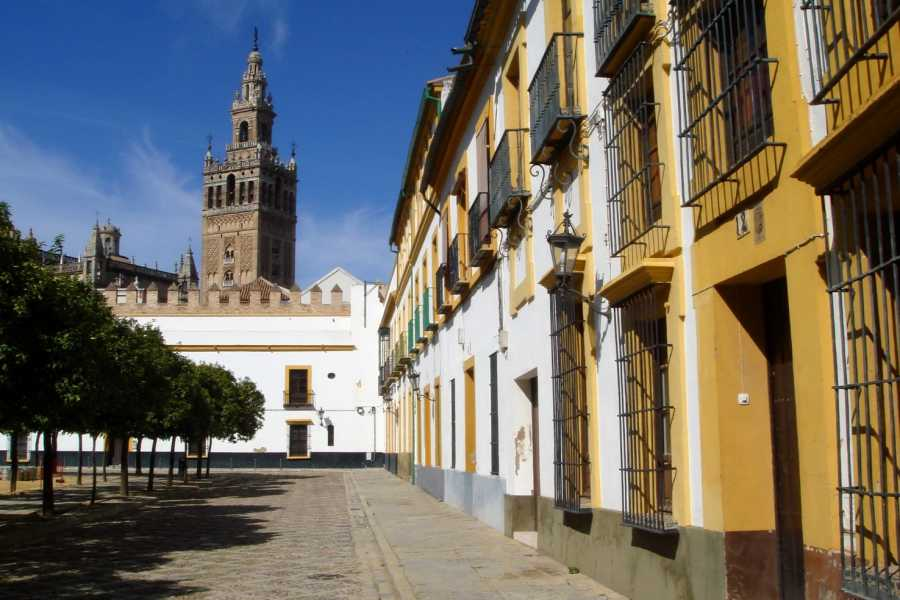 NHUE Official Guide walking tour of Seville