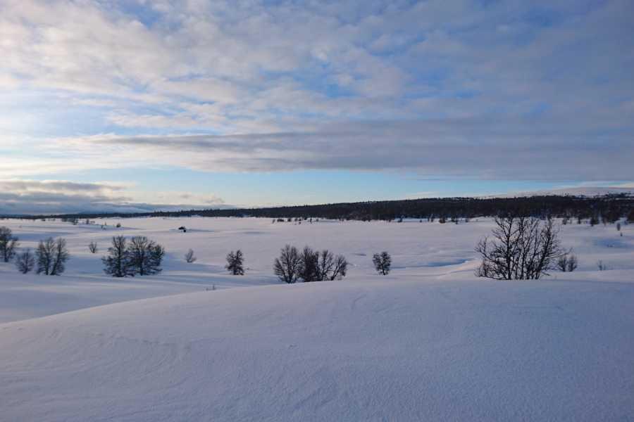 Contrast Adventure Norway Nordic Ski Høvringen til Lillehammer