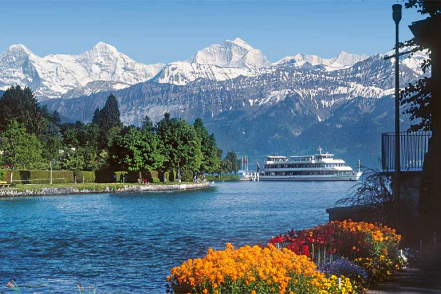 Brienz Sailing Tours Group Day Cruise A (departing from Thun)