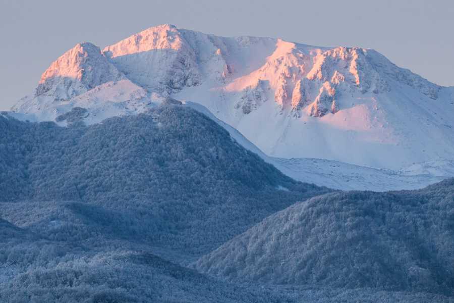 Wildlife Adventures Monte Meta, natura e fotografia dal tramonto all'alba